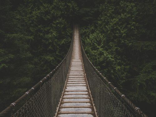 Free High Quality Stock Photos For Your Inspiration